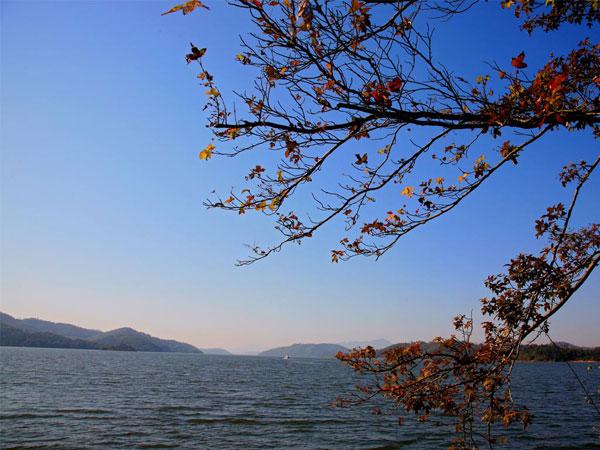 常州恐龙园 天目湖2日游 游园观湖,双重体验