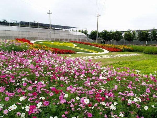 惠东巽寮湾-海滨温泉-永记生态园2日团队游>游玩