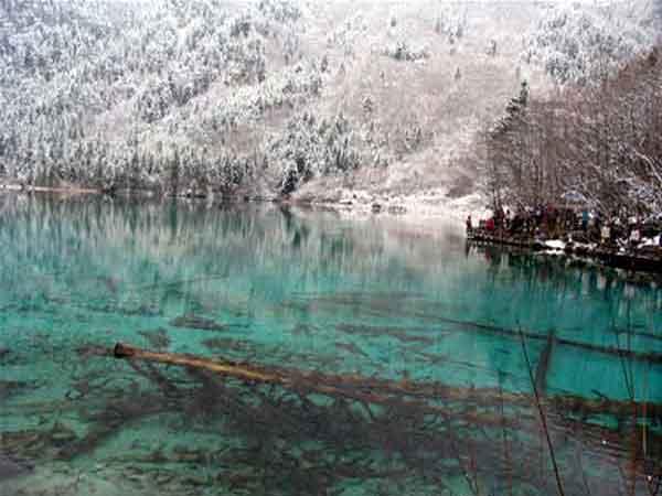 景点介绍: 五花海 九寨沟五花海海拔2472米,水深5米,面积9万平方米