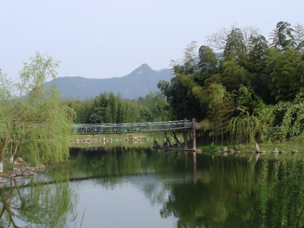 (24)  长隆水上乐园  (16)  天目湖山水园  (16)  长隆野生动物园