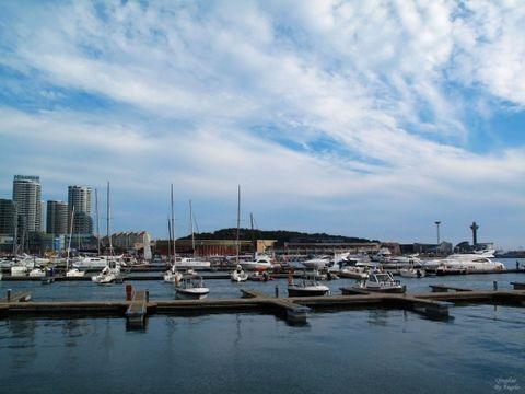 青岛-极地海洋世界-黄岛金沙滩3日游>赠车游跨海大桥