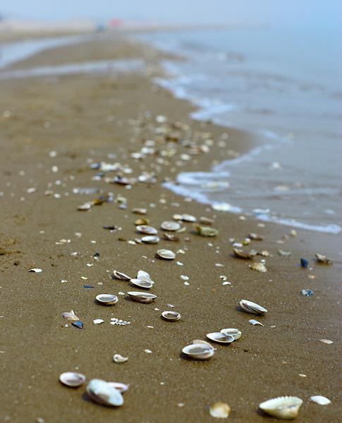 乐岛公园北戴河翡翠岛亲子3日>海滨宝贝计划,仅此一班