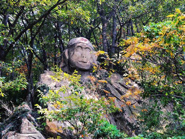 景点简介 花果山 花果山风景区是国家级重点风景名胜区.景区面积12.