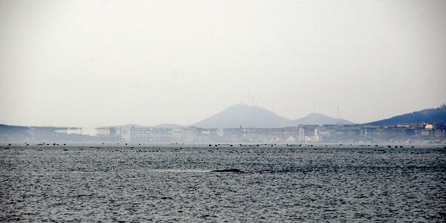 山东蓬莱三仙山风景区和八仙过海景区附近海域突然出现海市蜃楼奇观.
