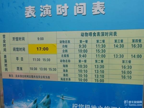 长隆动物园表演时间