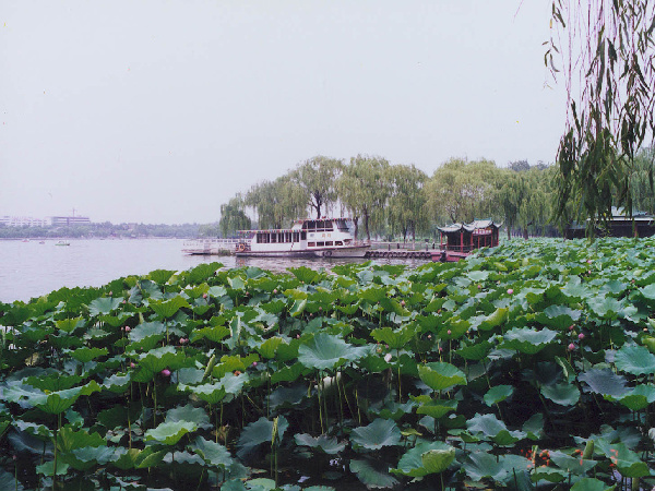 是泉城济南的象征与标志,与千佛山,大明湖并称为济南三大名胜.