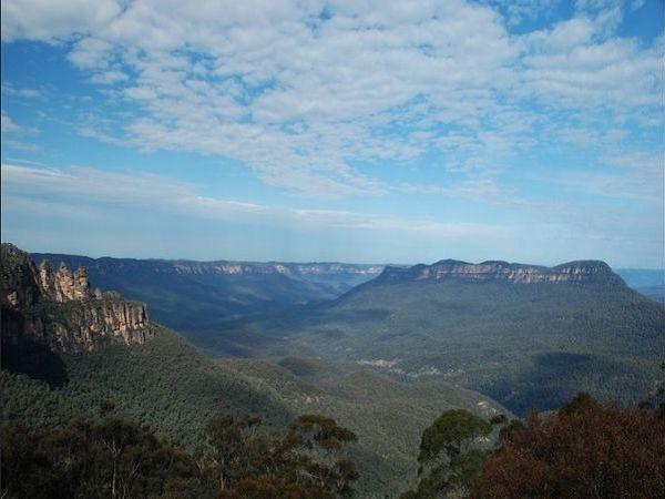 今日看点: 名列世界遗产的蓝山国家公园,种植了大量的澳洲国树-桉树