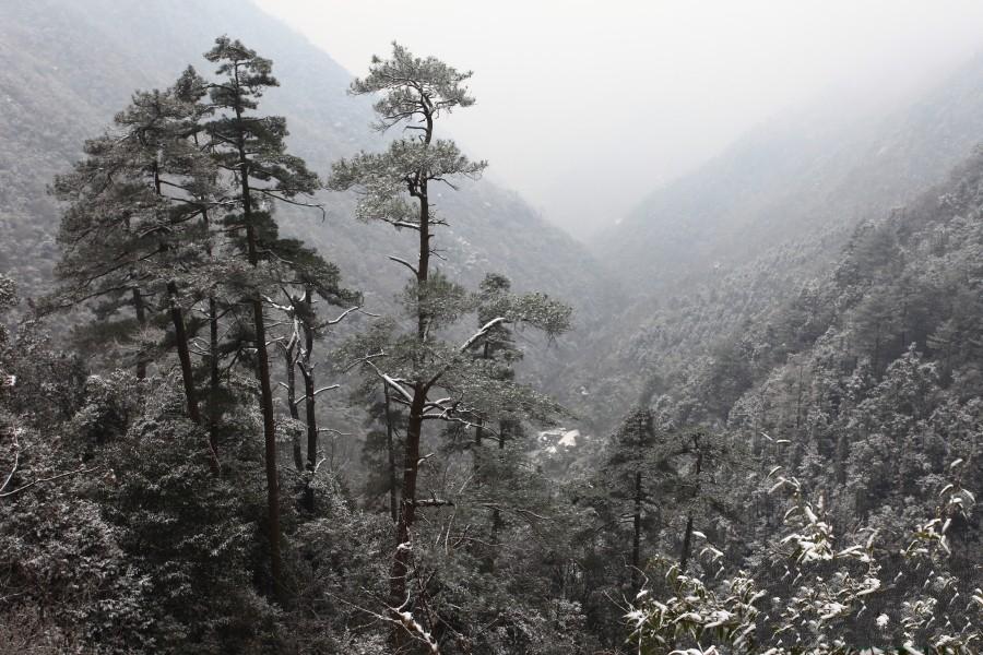 [春节] 德清月潭温泉-东天目山2日游>住宿农家乐