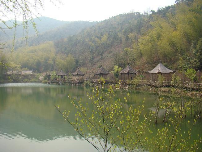 长兴赏桃花-仙山湖-古银杏长廊2游>春意暖