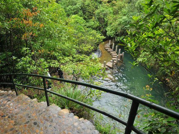 武夷山龙川大峡谷-玉龙谷景区1日游>自然生态游(当地