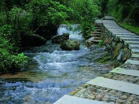 大明山-白水涧-临安2日游挖笋免费带,含468元