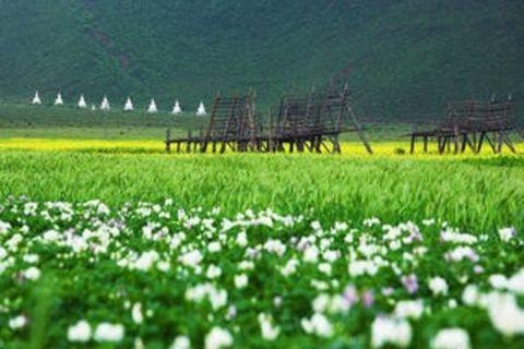 昆大丽 香格里拉三飞6日游 精华景点全含,梦幻普达措,慢游双廊图片