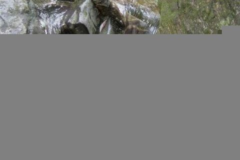 桐庐-锦绣山水洞-杭州野生动物园自驾2日游>宿富阳